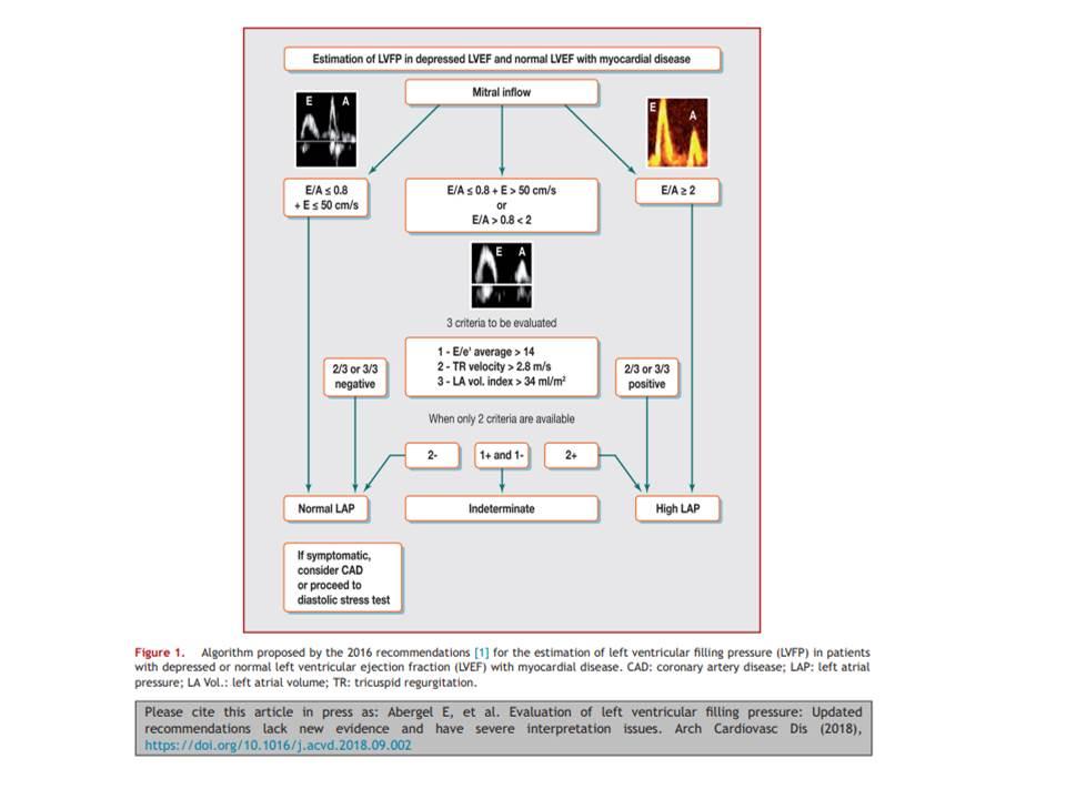 datation Scan vs échographie